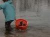 paddlefish-introduction-010
