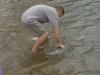 paddlefish-stocking-2-060